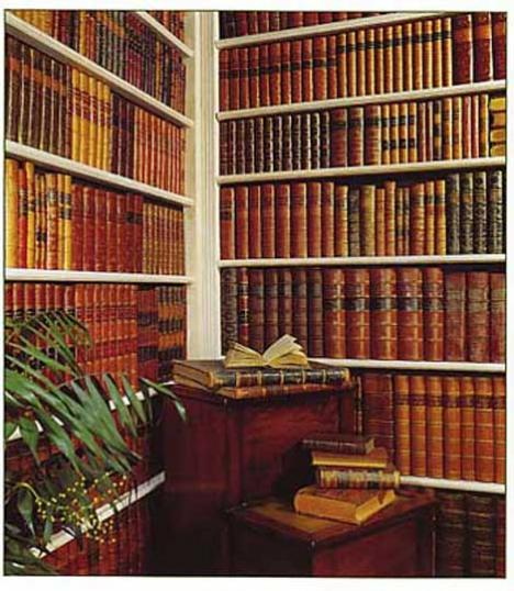9-91 - Faux Book Wall