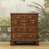 110-69 - Walnut Chest of Drawers